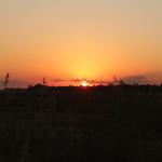 Sonnenuntergang mit Gräsern und Berg im Hintergrund