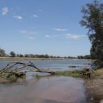 Da hinten sind irgendwo unsere Kanus - Rückkehr von der Walking Safari