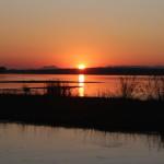Die Sonne färbt den Sambesi orange