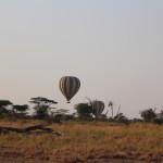 Die andere Art, die Safari zu machen. Leider etwas sehr teuer